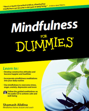 Mindfulness for Dummies review