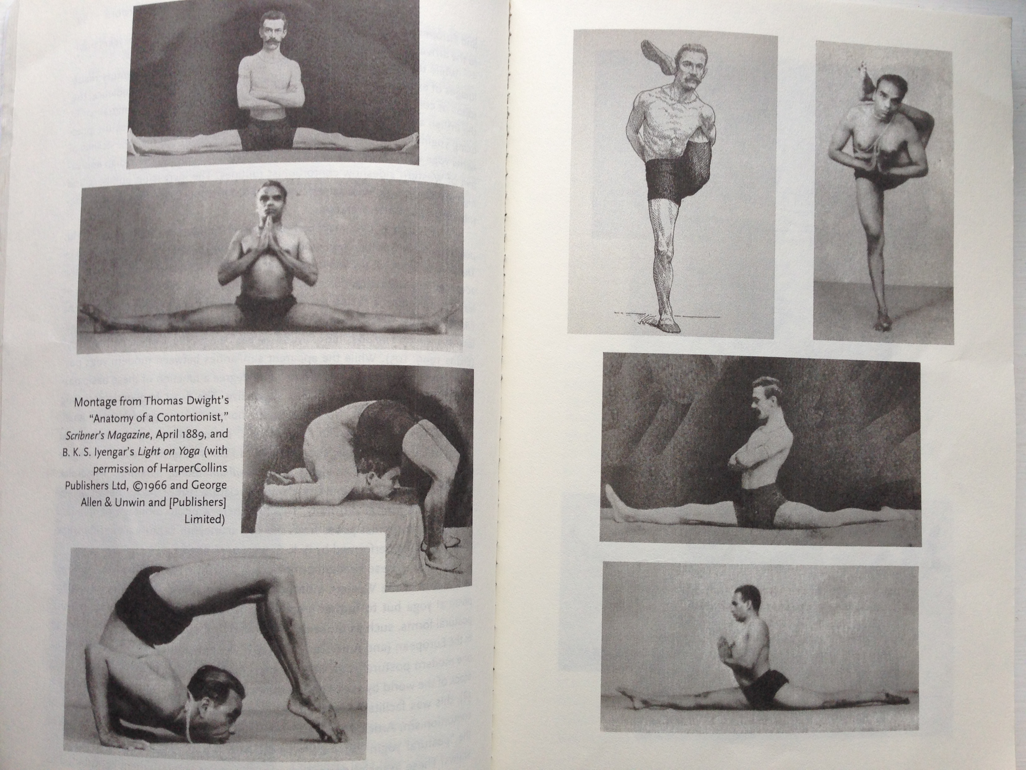 The similarity between the postures taken on by a 19th century contortionist and B.K.S. Iyengar's asanas in 'Light on Yoga'.